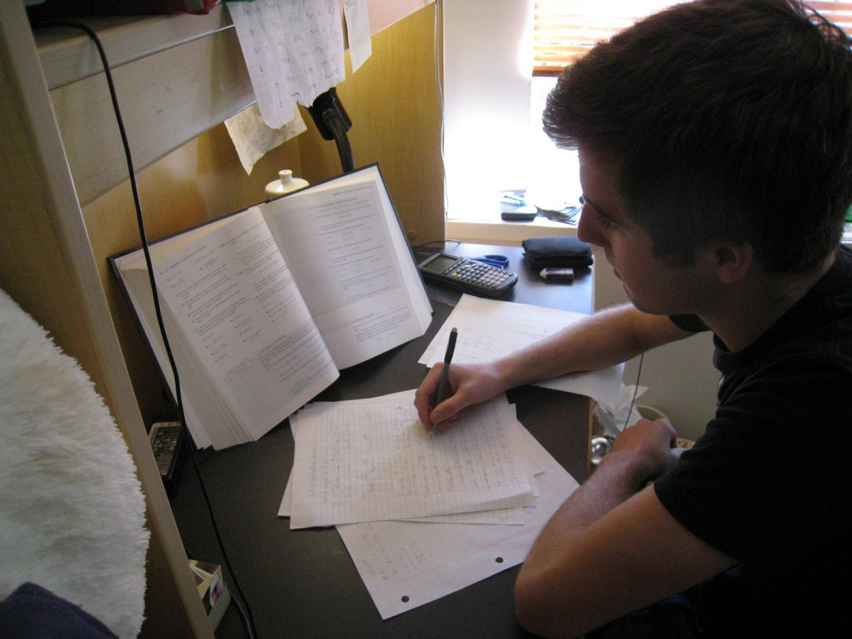 İtalya'da Geçerli Olan Diploma Programları Nelerdir?
